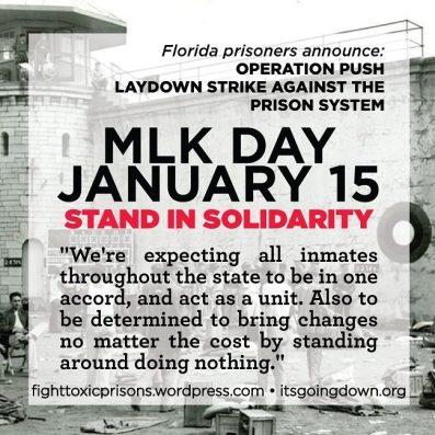 operation push solidarity
